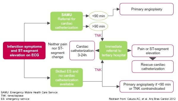 Flowchart showing components and workflow of STEMI Network in Sao Paulo