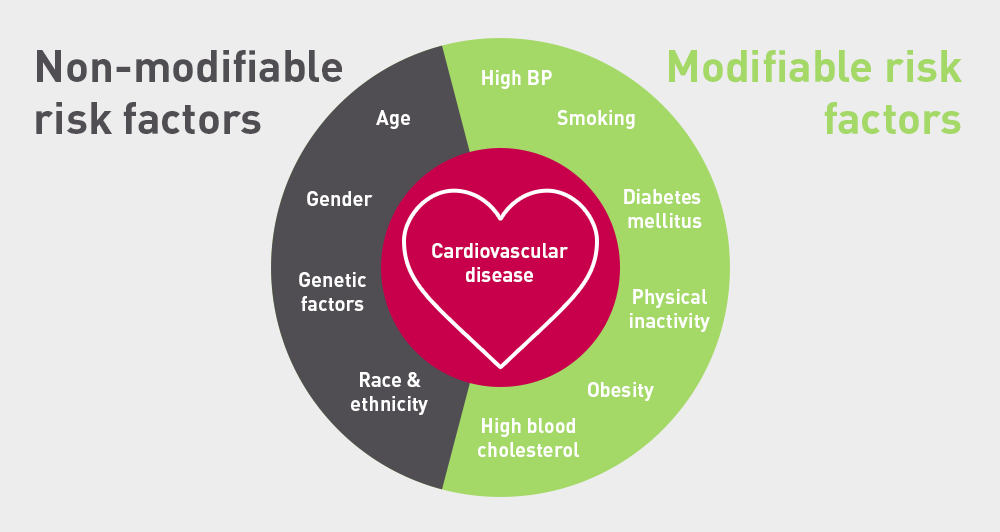 Major  modifiable  and  non  modifiable  risk  factors  for  cardiovascular  disease             physical, clinical history and genetic makeup as risk factors for cardiovascular disease