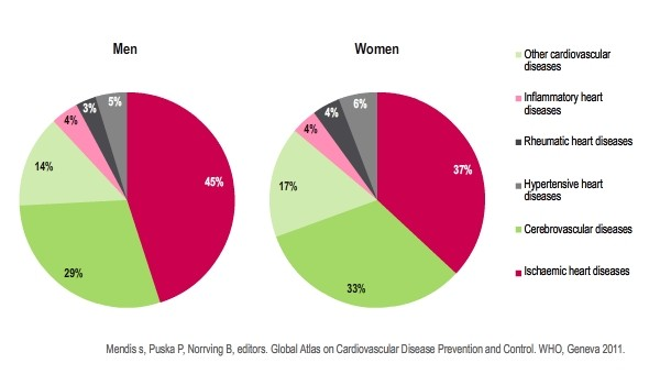 Distribution  of  global  CVD  burden  due  to  cardiovascular  diseases  in  men  and  women          WHO report on global prevention and control of cardiovascular diseases, 2011