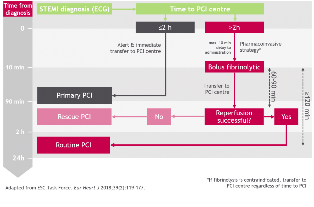 ESC STEMI guidelines 2017: reperfusion strategies