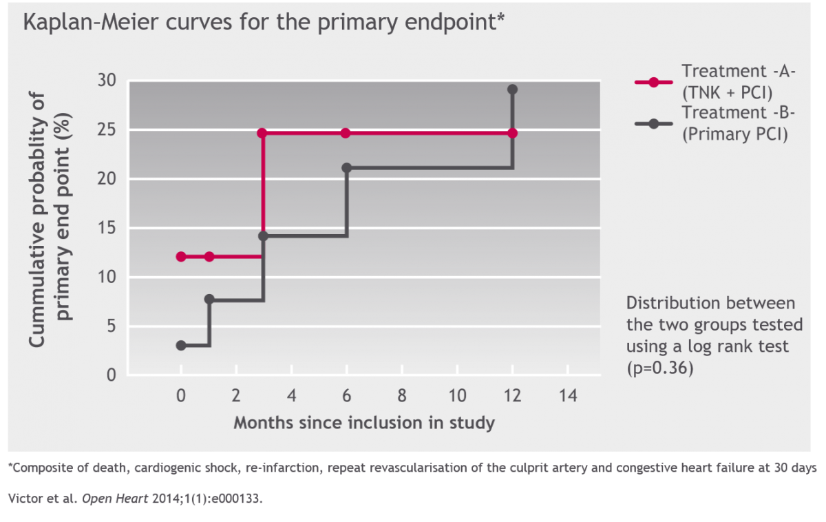 Kaplan-Meier curves for the primary endpoint